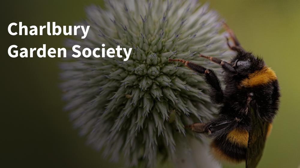 Charlbury Garden Society website