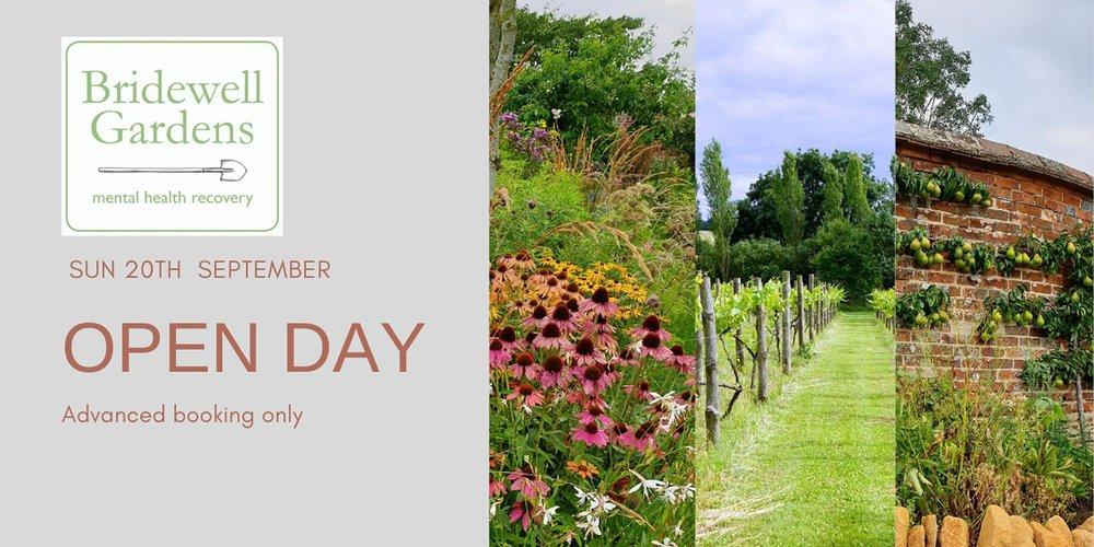 Open Day Bridewell Gardens.jpg